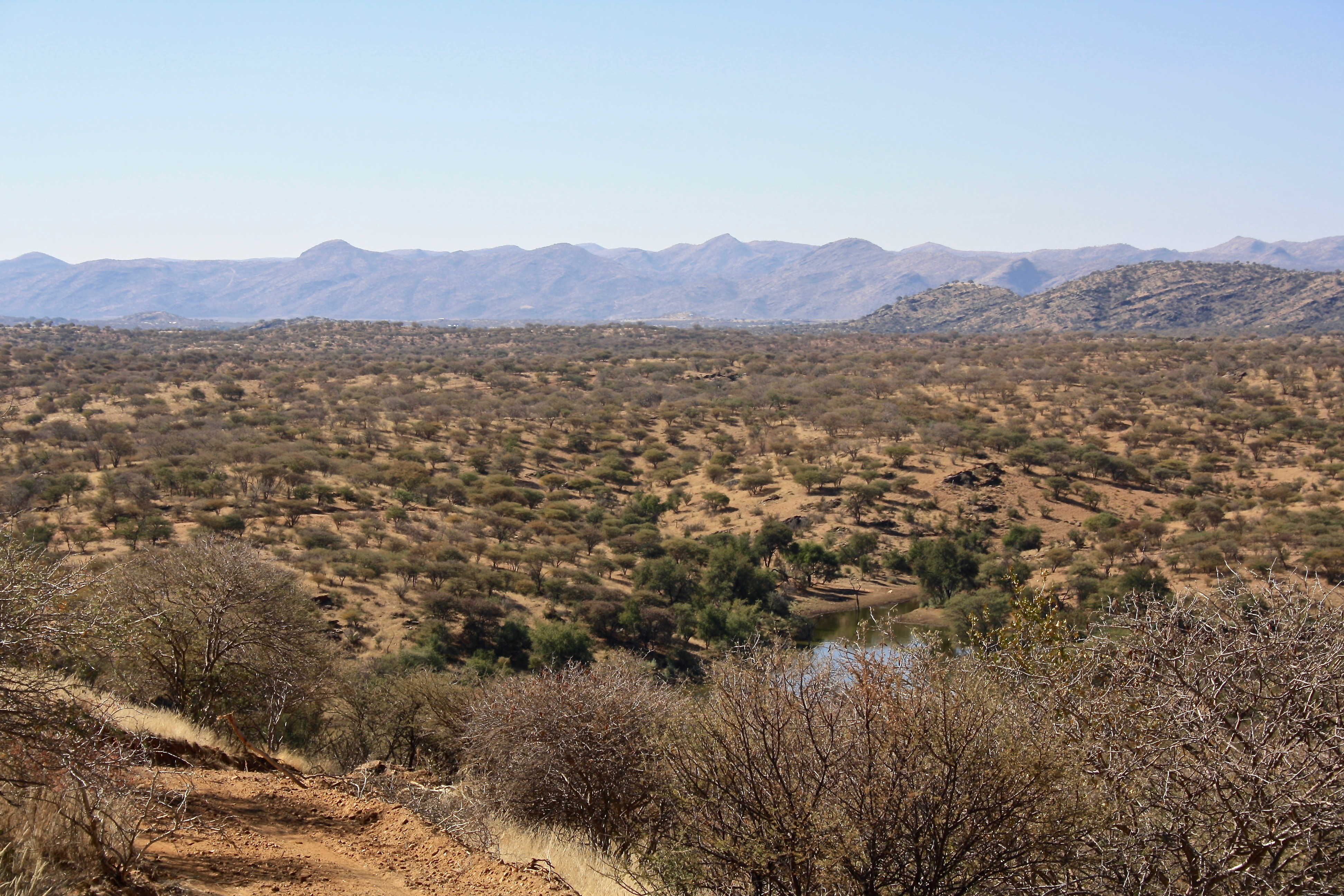 Ausblick, Namibia, Outback, Steppe, Damm